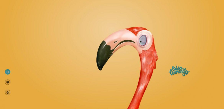 pablo the flamingo